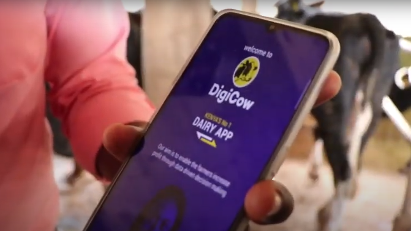 Digital Dairy Records Digicow Kiambu